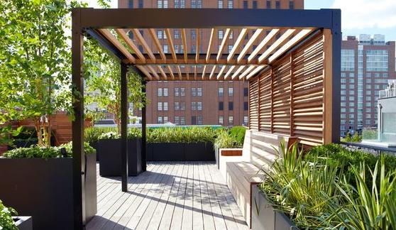 terrace garden with a pergola